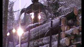 Logging timber in Norway, felling, bucking, delimbing, stacking...