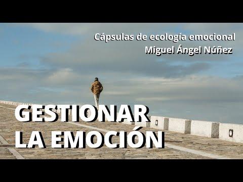 10-capsulas-de-ecología-emocional.-gestionar-la-emoción