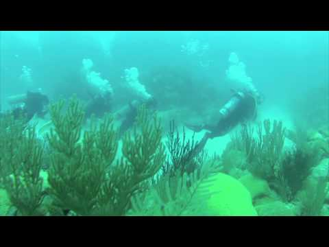 Lartington Wreck Dive June 11, 2014 Bermuda with Blue Water Divers