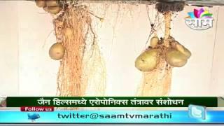 Aeroponics technique to grow potatoes