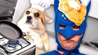 Chef Dogs And Superhero Make Giant Pie