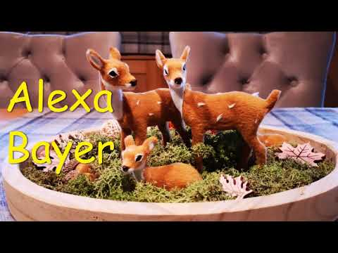 DECORATE for FALL WITH ME 2019🍁 FALL decor Ideas/ Alexa Bayer