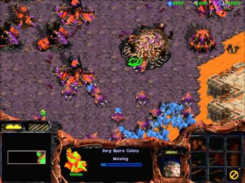 StarCraft Broodwar! -  Zerg mission 4 :LIBERATION OF KORHAL! - (with MarxMilitia)