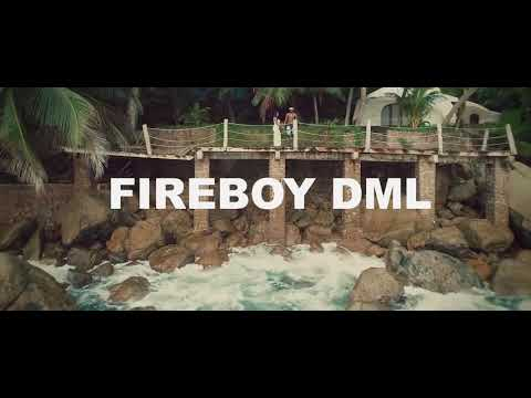 fireboy-dml-what-if-i-say-2020