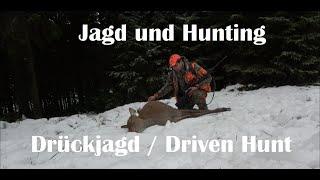 Drückjagd November 2019 Jagd und Hunting