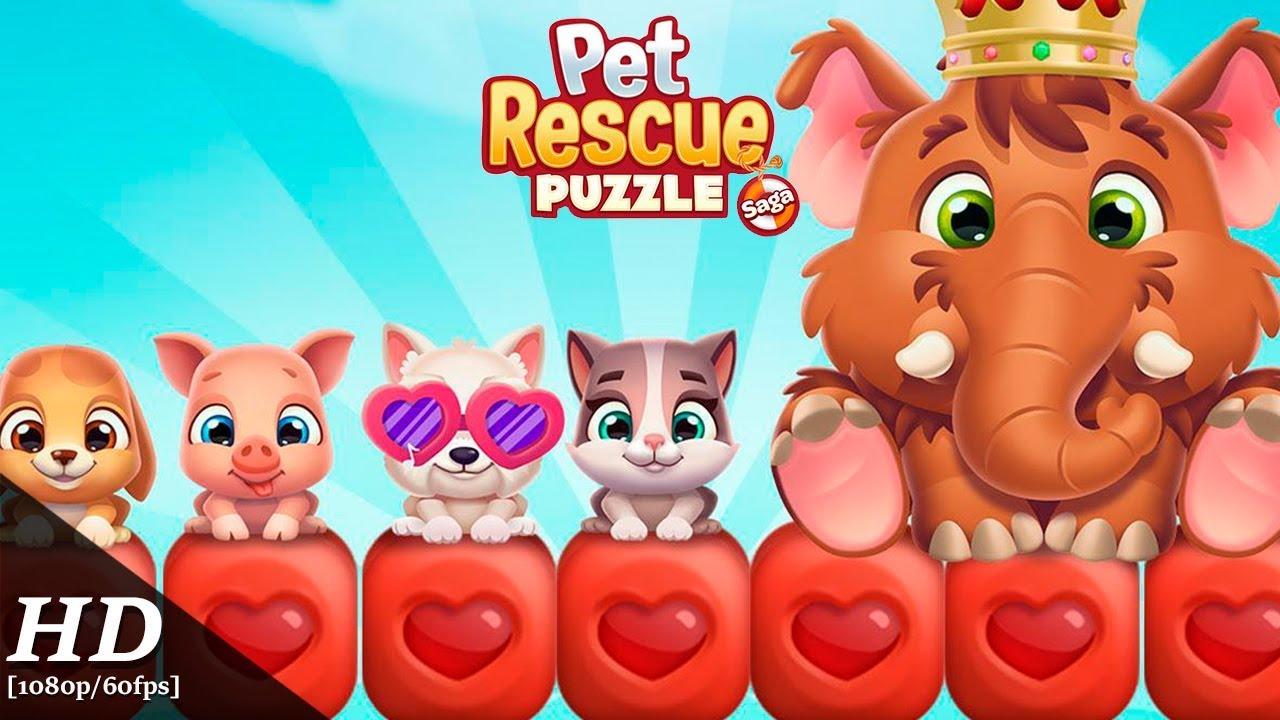 Pet Rescue Puzzle Saga Android Gameplay [60fps]