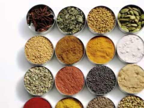 Ishwar Agro Exports - Introduction