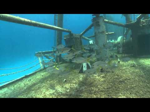 Diving in the Cayman Islands: Wrecks