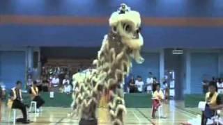潤福堂(香港)國術龍獅總會全港學界公開比賽 聖安當小學 蛇青
