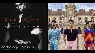 Suck That Pony Ginuwine vs. Jonas Brothers Mashup.mp3
