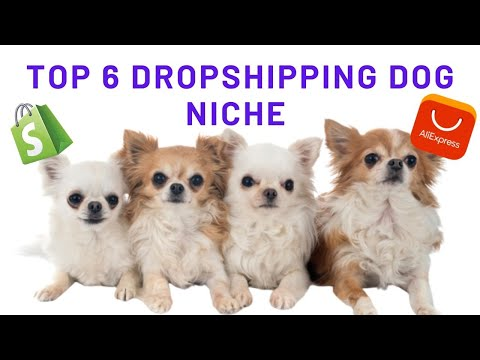 Dropshipping Dog Niche 2020 | Dog Niche Dropshipping | Winning Products Video thumbnail