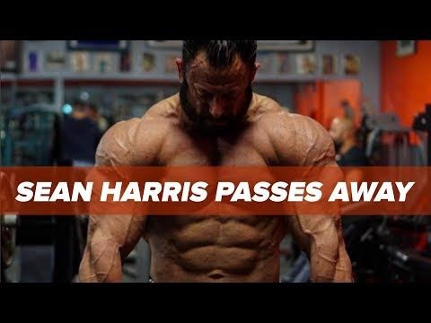 IFBB Pro Sean Harris Passes Away  Drowsy Driving