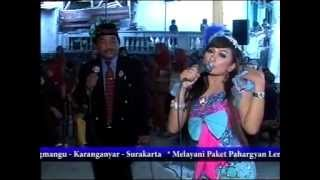 Download Mp3 Rondo Teles Cover Ira Shofira  Cs Sangkuriang