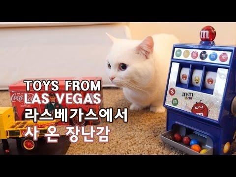 라스베가스에서 온 고양이 장난감 CAT TOYS FROM LAS VEGAS