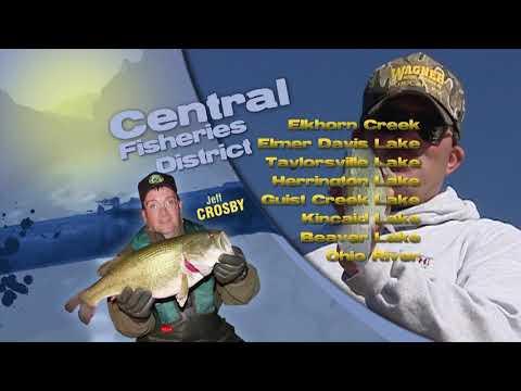 Fishing Report - October 10th, 2019