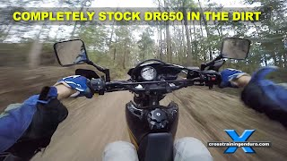 DR650 CROSS TRAINING: putting lipstick on the bushpig (motovlog #71)