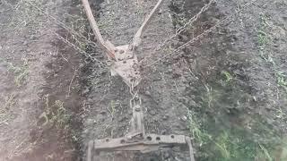 Боронование семечек трактором МТЗ 826