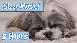 Download The Ultimate Dog Sleep Soundtrack! Soothing Tones, Relaxing Music to Calm Dogs and Relieve Anxiety🐶 Mp3 and Videos