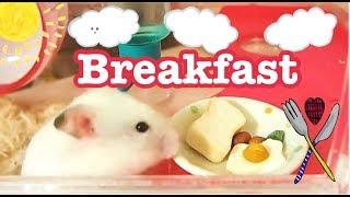 ハムスターに定番の朝食、食パンに目玉焼きを作ってみました♪ 材料は は...