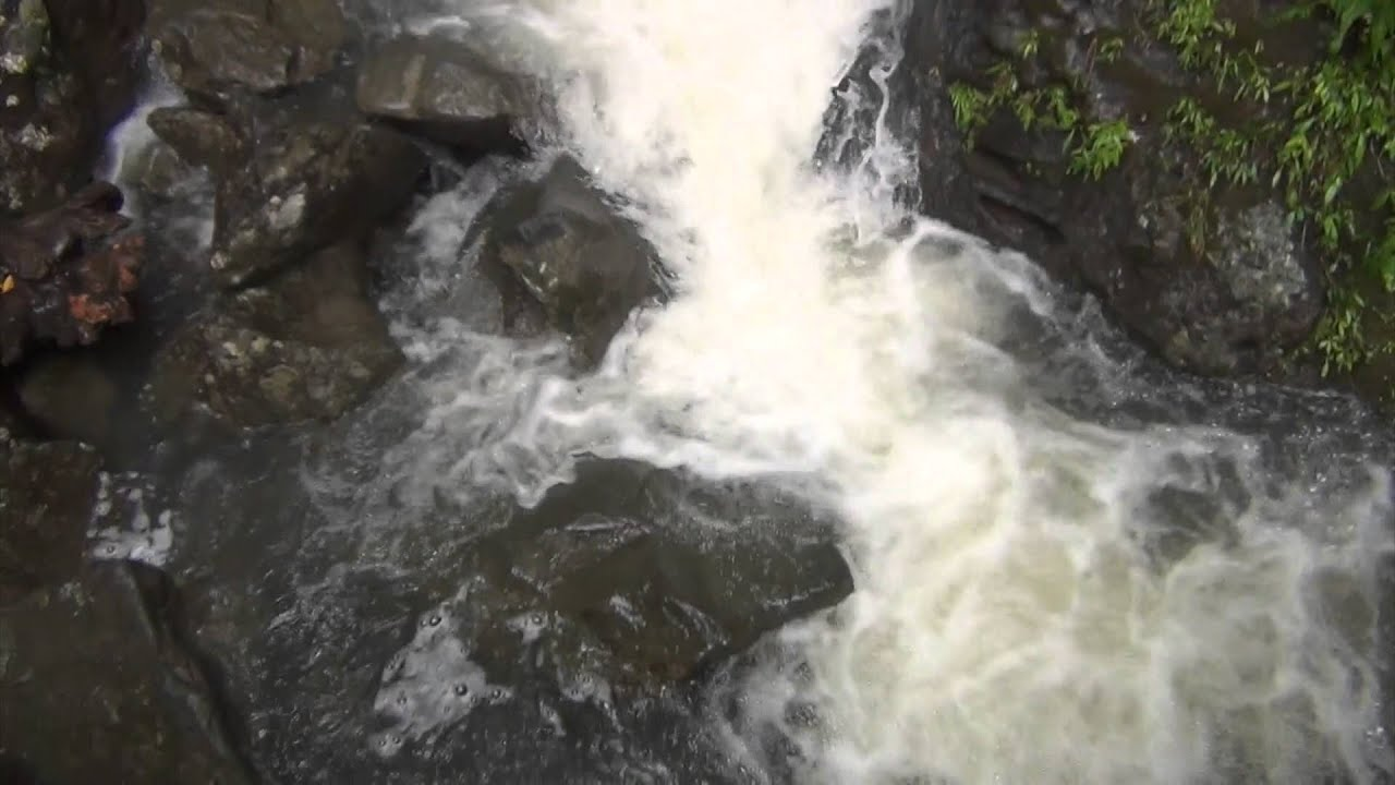 El Yunque Waterfall and River Relax Sounds