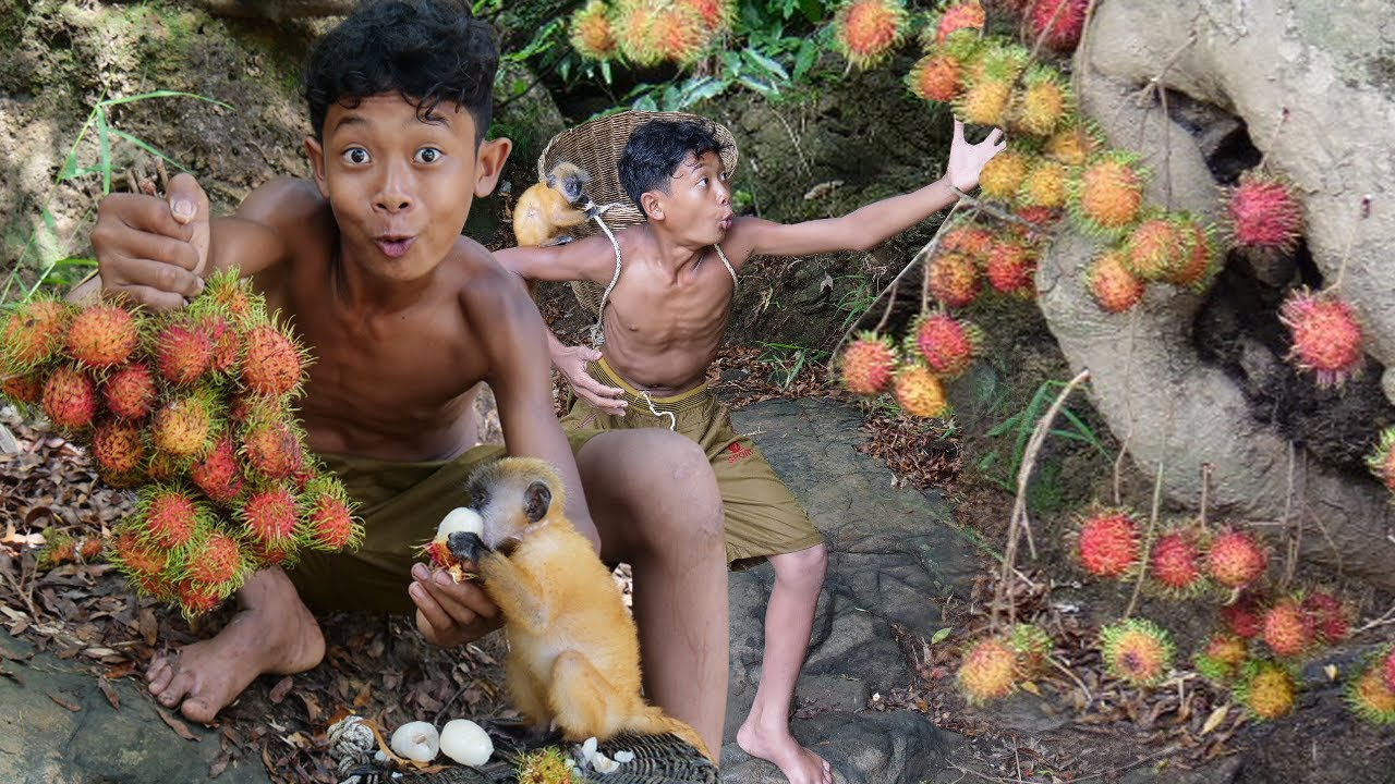 Survival Skills - Eating rich fruits with yellow babies monkey in the jugle