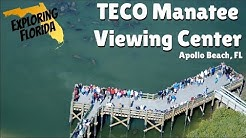 Exploring Florida: TECO Manatee Viewing Center in Apollo Beach, FL