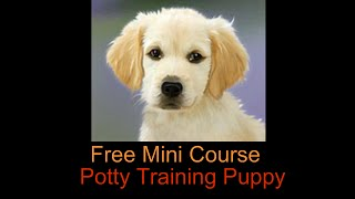 Potty training boot camp puppy - Free Potty training boot camp puppy course