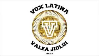 Grasu XXL - Minciuni Adevarate (Vox Latina Remix cu Phelipe)