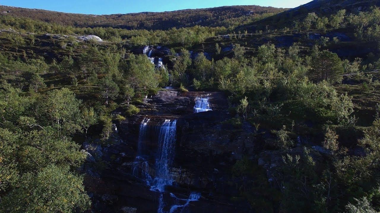 Skogstur til Forsan på Skaug