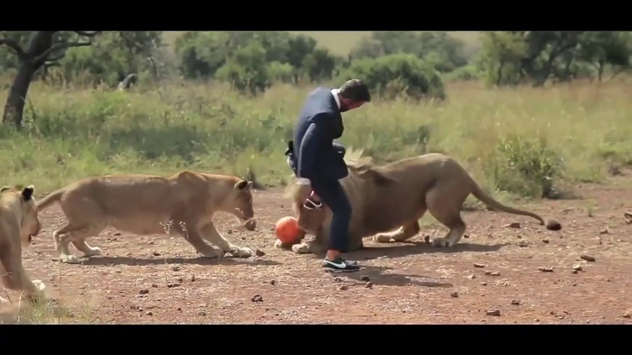 Playing soccer with LIONS!!!