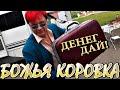 БОЖЬЯ КОРОВКА в фильме Леонида Анатольевича – ДЕНЕГ ДАЙ