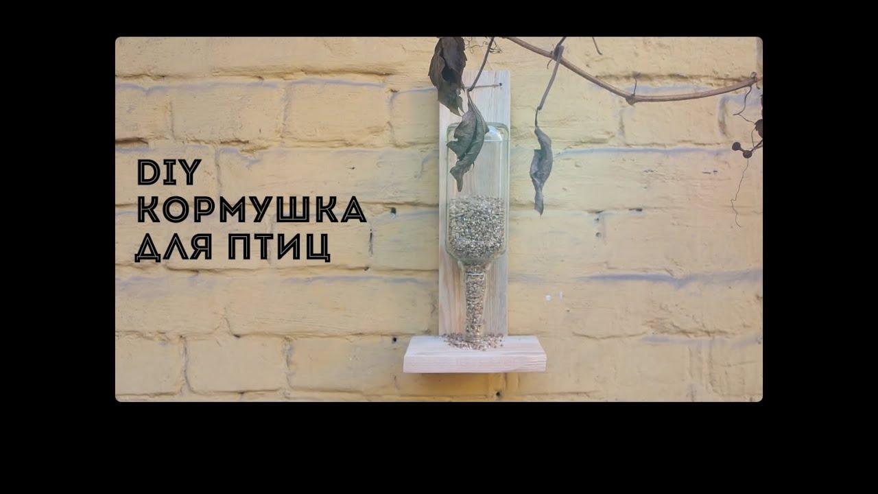 Как сделать кормушку для птиц своими руками | Лайфхакер