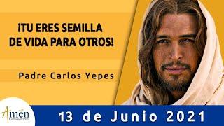 Evangelio De Hoy Domingo 13 Junio 2021 l Padre Carlos Yepes