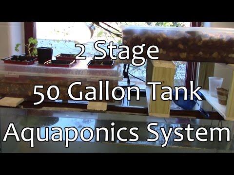 50 Gallon Tank Dual Growbed Aquaponics System