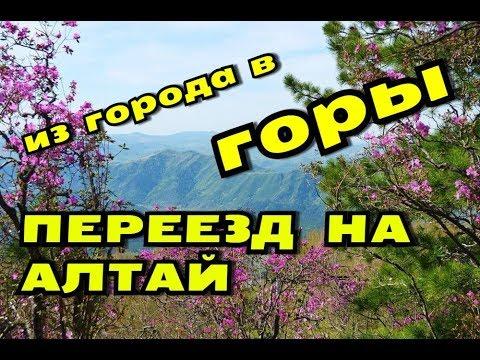 УЕХАТЬ НА АЛТАЙ // МОЙ ПЕРЕЕЗД В ДЕРЕВНЮ // ОБЗОР МЕСТА
