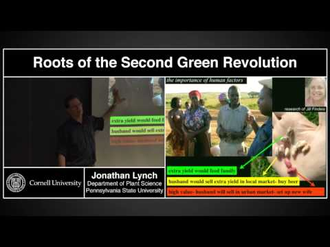 """""""Roots of the Second Green Revolution"""" - Jonathan Lynch, Penn State"""
