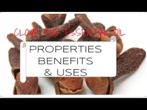 clove-bud-essential-oil---benefits-&-uses