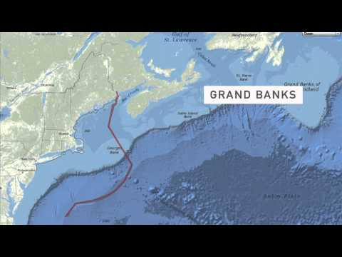 Greater Boston Video: Atlantic Cod Crisis