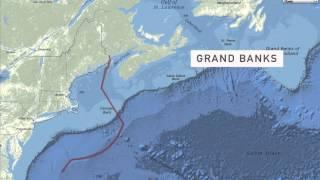 Greater Boston Video: Atlantic Cod Crisis