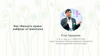 EUREKA!FEST 2016 | Егор Задереев. Как обмануть время: лайфхак от животных
