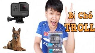 TXT - Trải Nghiệm Gopro 5 Black : Bị Con Chó Troll