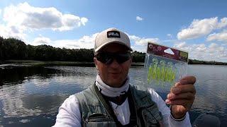 Crazy Fish Active Slug приманка для окуня Окунь на микроджиг Рыбалка на окуня