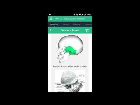 Human Skeleton Reference for PC/Laptop Free Download - Windows 10/7
