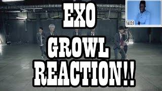 EXO - GROWL MUSIC VIDEO REACTION!! (kpop)