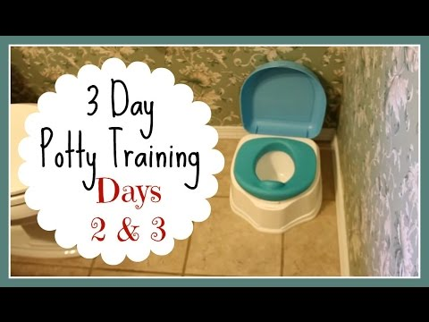 3 day potty training pdf