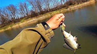 Рыбалка КОРМАКАМИ на СТРОИТЕЛЬНЫЙ ПЕНОПЛАСТ!!!(Неизданное)