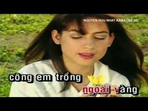 karaoke bông bí vàng Phi nhung