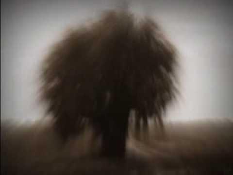 Iluzjon - Empty Fall