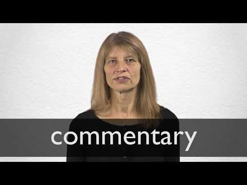 Commentary Synonyms | Collins English Thesaurus