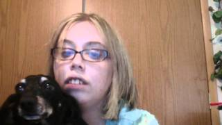 Circus Britney Spears Cover By Nichole337 With Toby The Dachshund